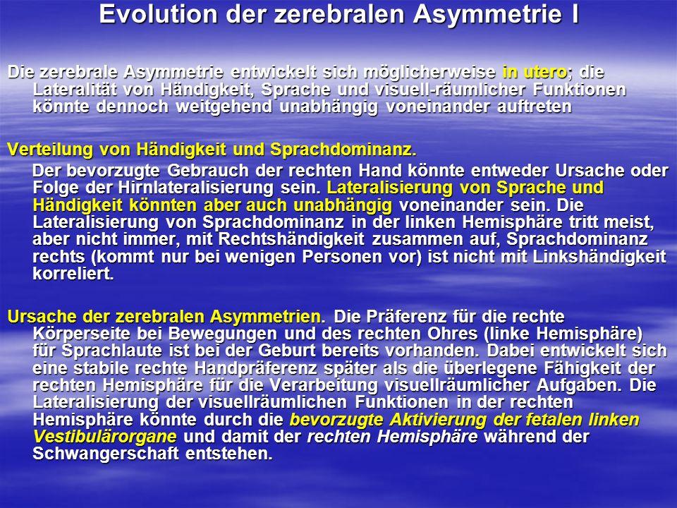 Evolution der zerebralen Asymmetrie I