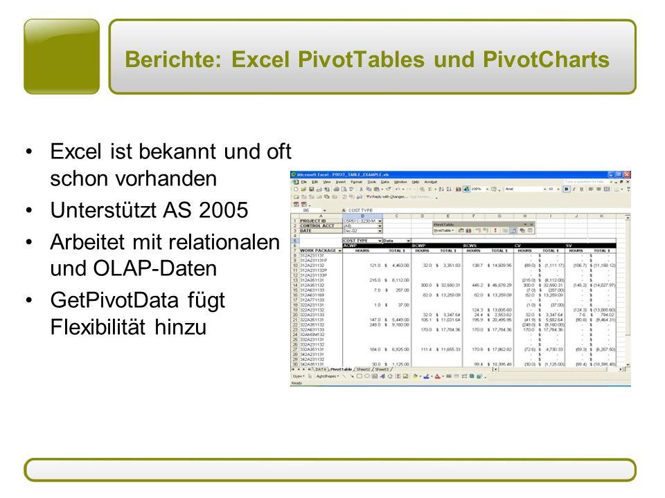 Berichte: Excel PivotTables und PivotCharts