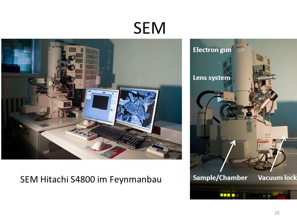 SEM SEM Hitachi S4800 im Feynmanbau Electron gun Lens system