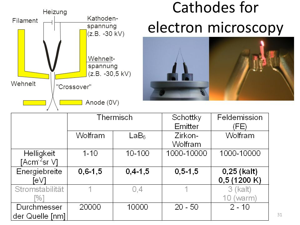 Cathodes for electron microscopy