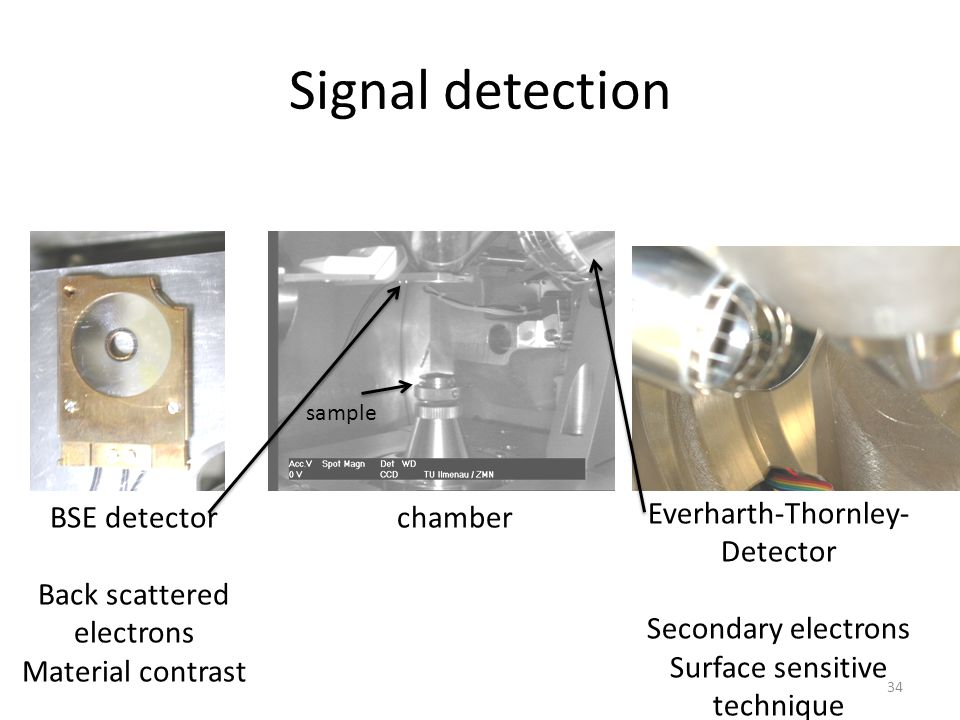 Signal detection BSE detector Back scattered electrons