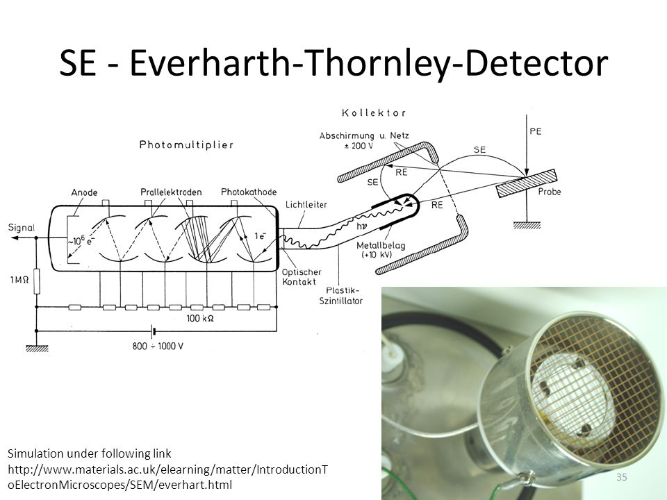 SE - Everharth-Thornley-Detector