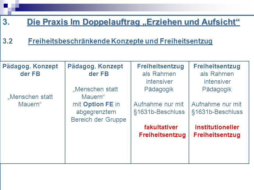 """3. Die Praxis Im Doppelauftrag """"Erziehen und Aufsicht"""