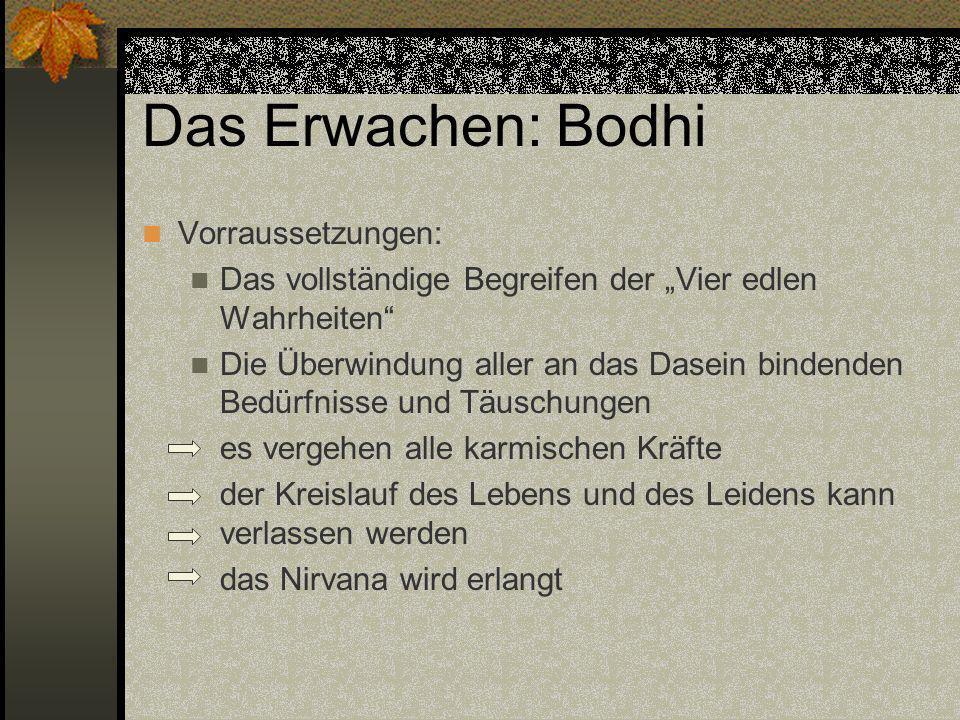 Das Erwachen: Bodhi Vorraussetzungen:
