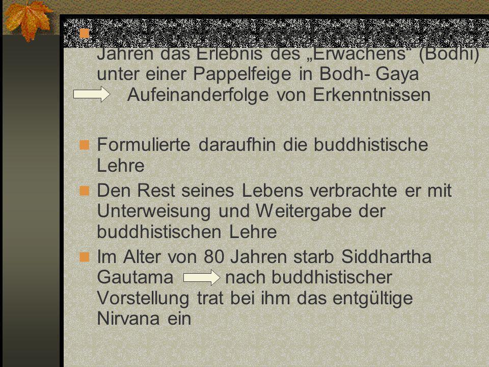 """Laut Überlieferung erlangte er im Alter von 35 Jahren das Erlebnis des """"Erwachens (Bodhi) unter einer Pappelfeige in Bodh- Gaya Aufeinanderfolge von Erkenntnissen"""