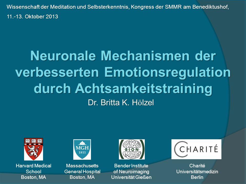 Wissenschaft der Meditation und Selbsterkenntnis, Kongress der SMMR am Benediktushof, 11.-13. Oktober 2013