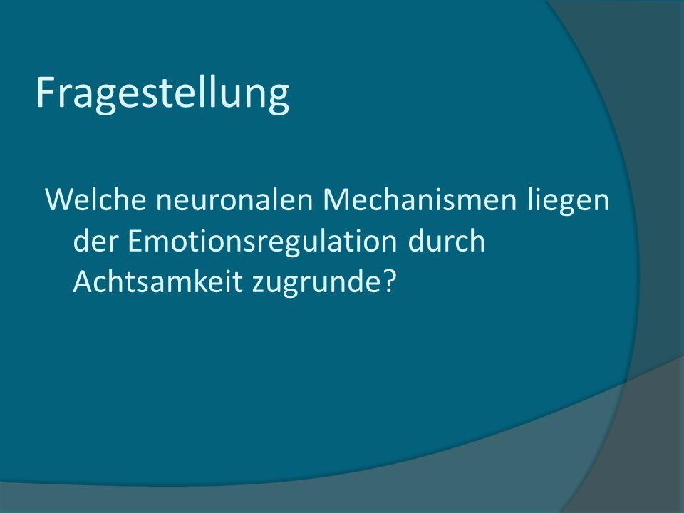 Fragestellung Welche neuronalen Mechanismen liegen der Emotionsregulation durch Achtsamkeit zugrunde