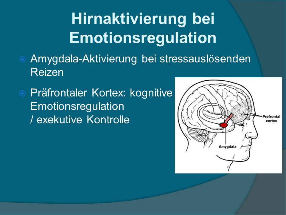 Hirnaktivierung bei Emotionsregulation