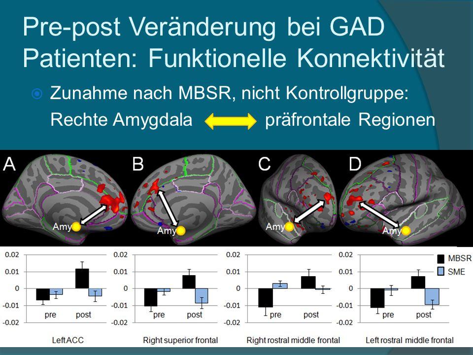 Pre-post Veränderung bei GAD Patienten: Funktionelle Konnektivität