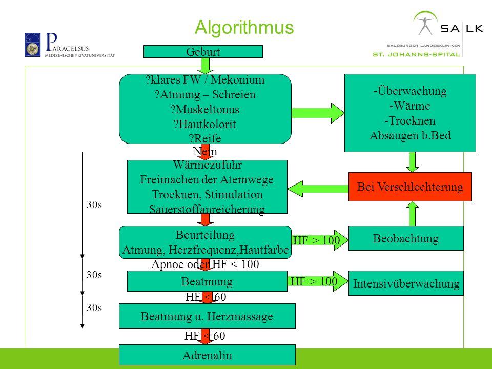 Algorithmus Geburt klares FW / Mekonium