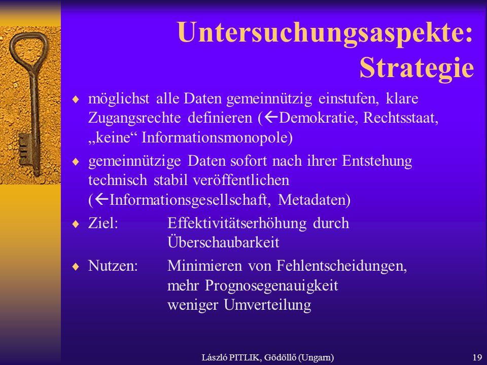 Untersuchungsaspekte: Strategie