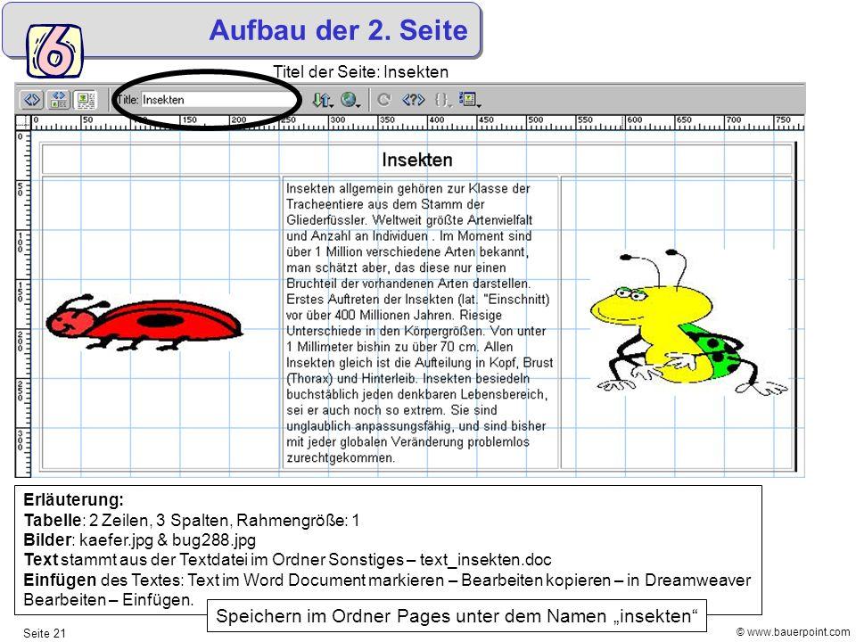 Aufbau der 2. Seite Titel der Seite: Insekten. Erläuterung: Tabelle: 2 Zeilen, 3 Spalten, Rahmengröße: 1.