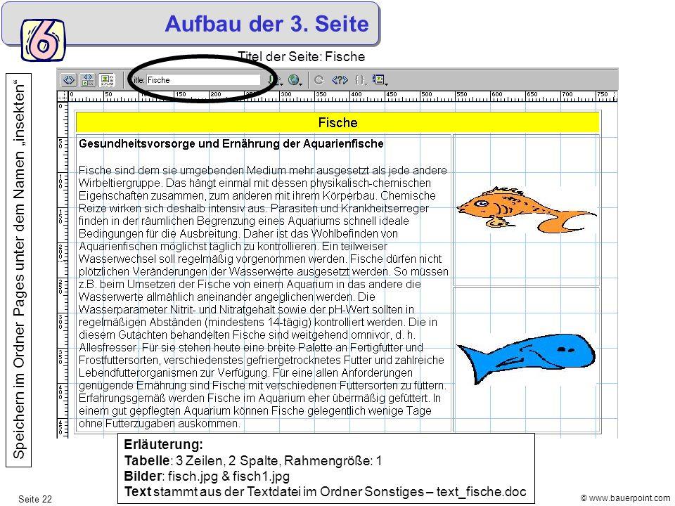 """Aufbau der 3. Seite Titel der Seite: Fische. Speichern im Ordner Pages unter dem Namen """"insekten"""