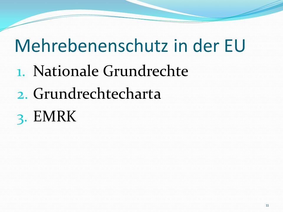 Mehrebenenschutz in der EU