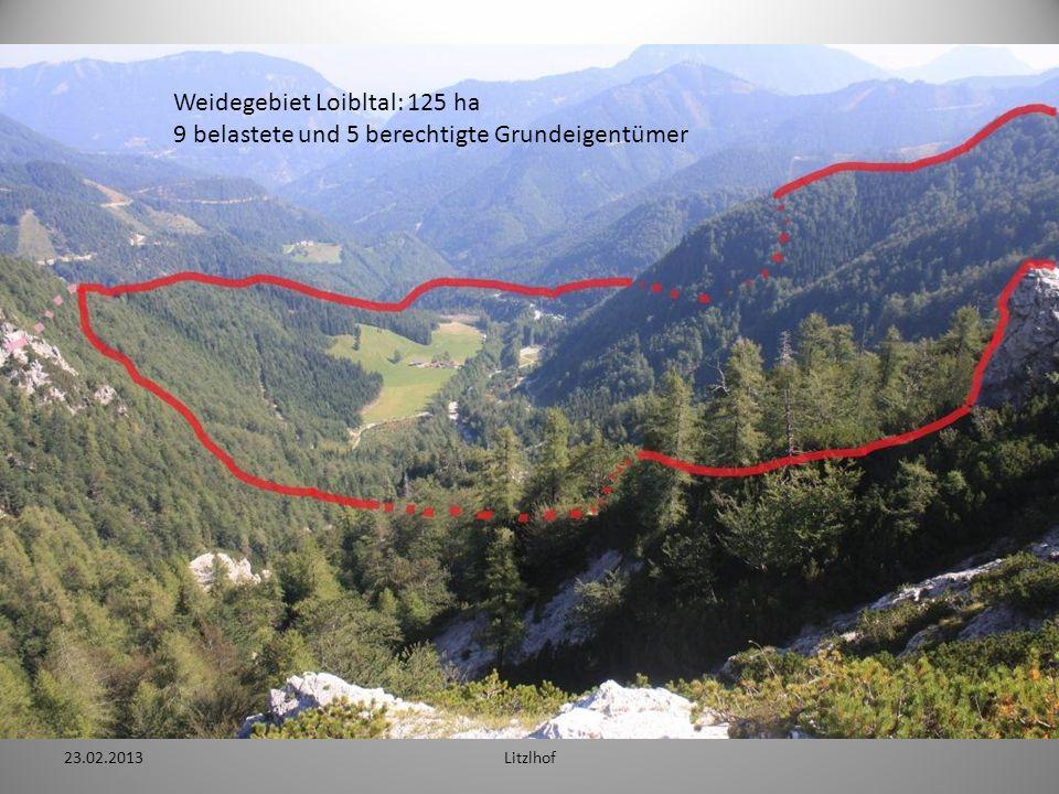 Weidegebiet Loibltal: 125 ha