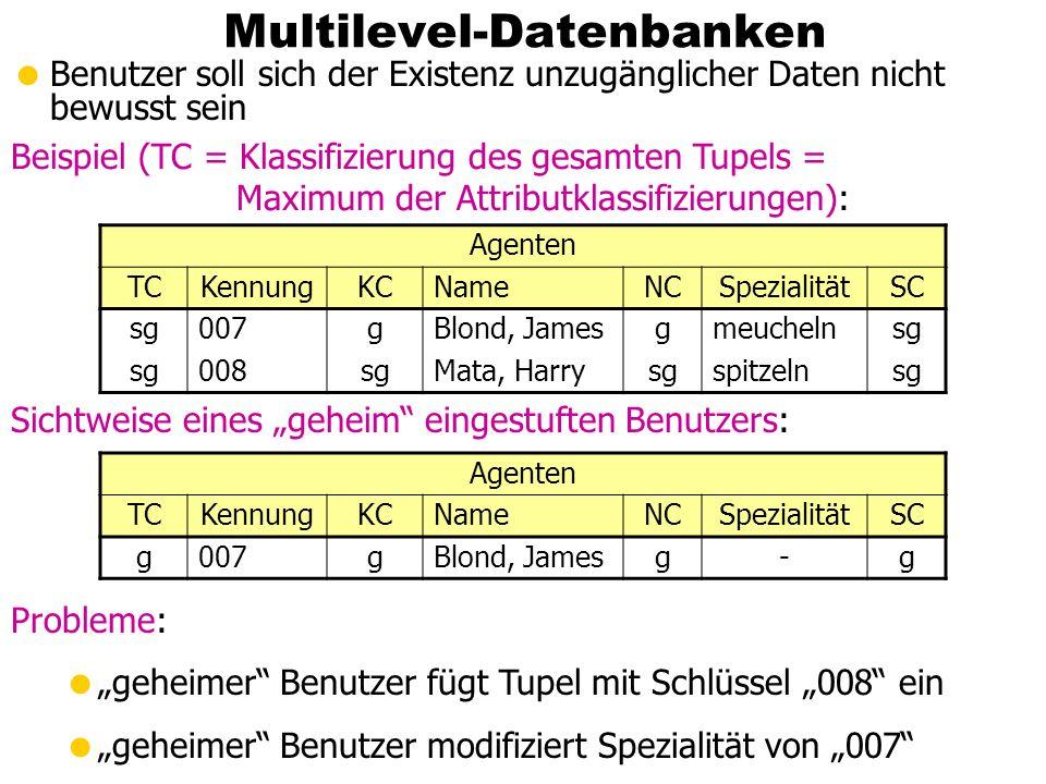 Multilevel-Datenbanken