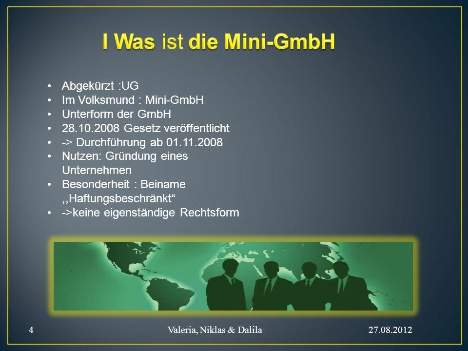 I Was ist die Mini-GmbH Abgekürzt :UG Im Volksmund : Mini-GmbH