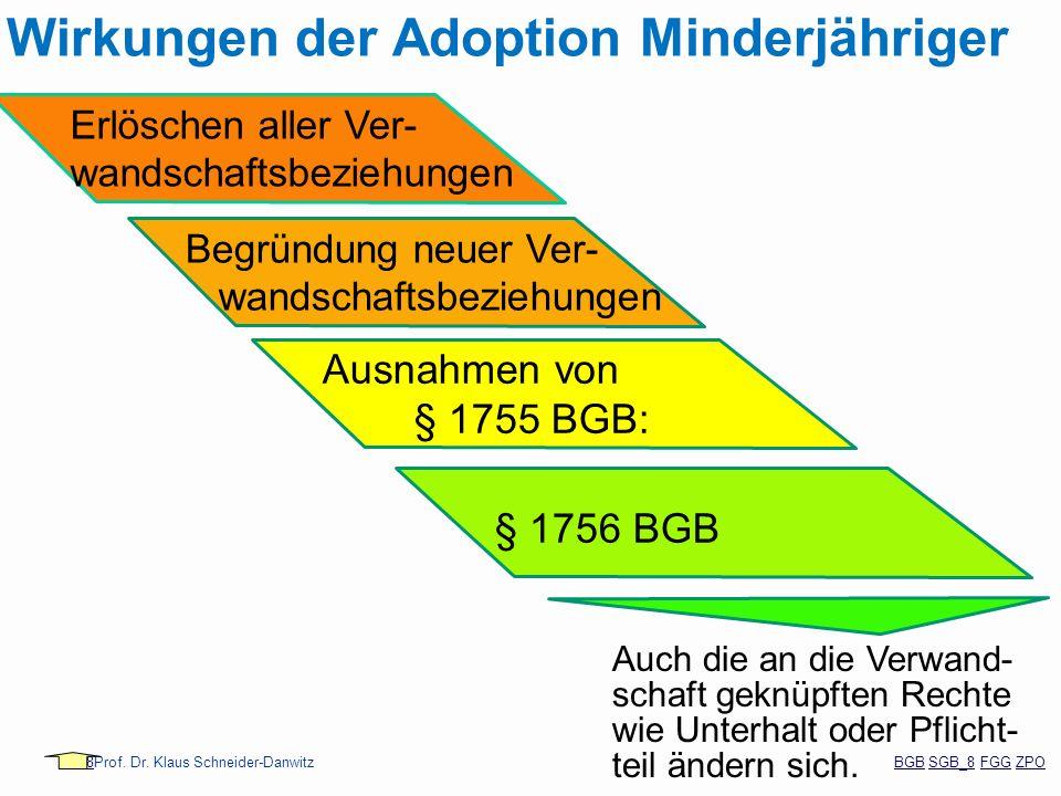 Wirkungen der Adoption Minderjähriger