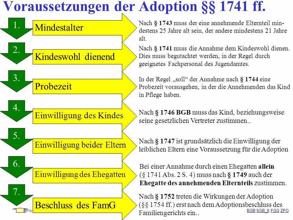 Voraussetzungen der Adoption §§ 1741 ff.