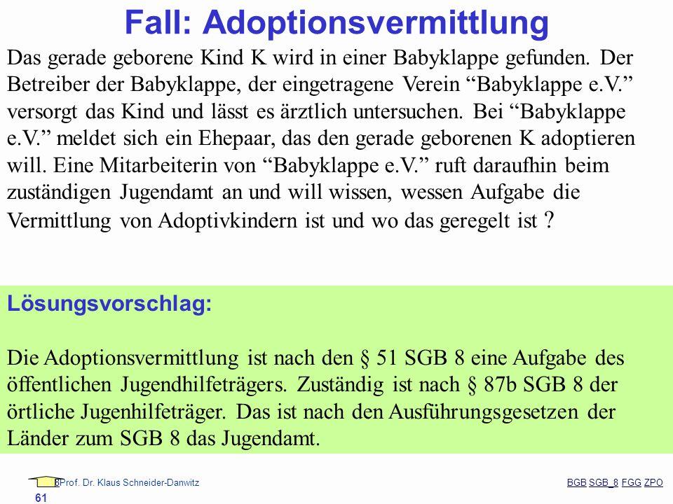 Fall: Adoptionsvermittlung