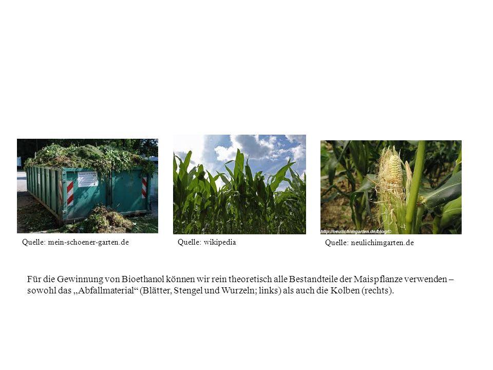 frage aus welchen quellen kann bioethanol gewonnen werden ppt herunterladen. Black Bedroom Furniture Sets. Home Design Ideas