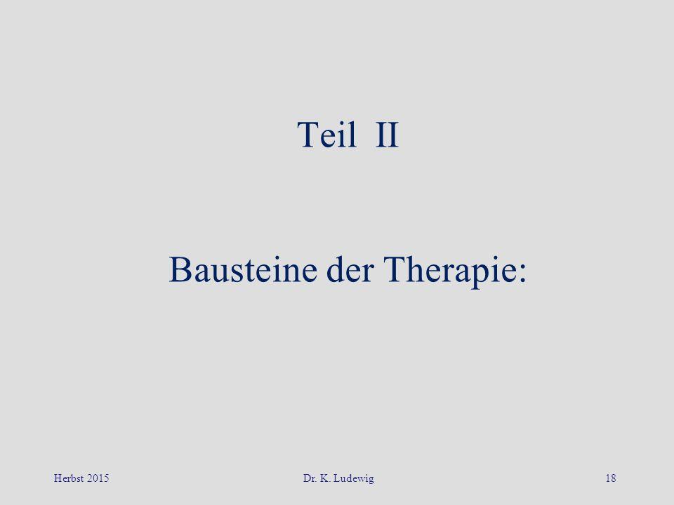 Bausteine der Therapie: