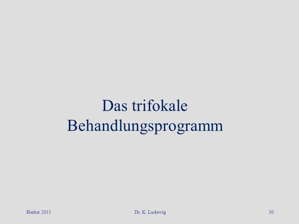Das trifokale Behandlungsprogramm