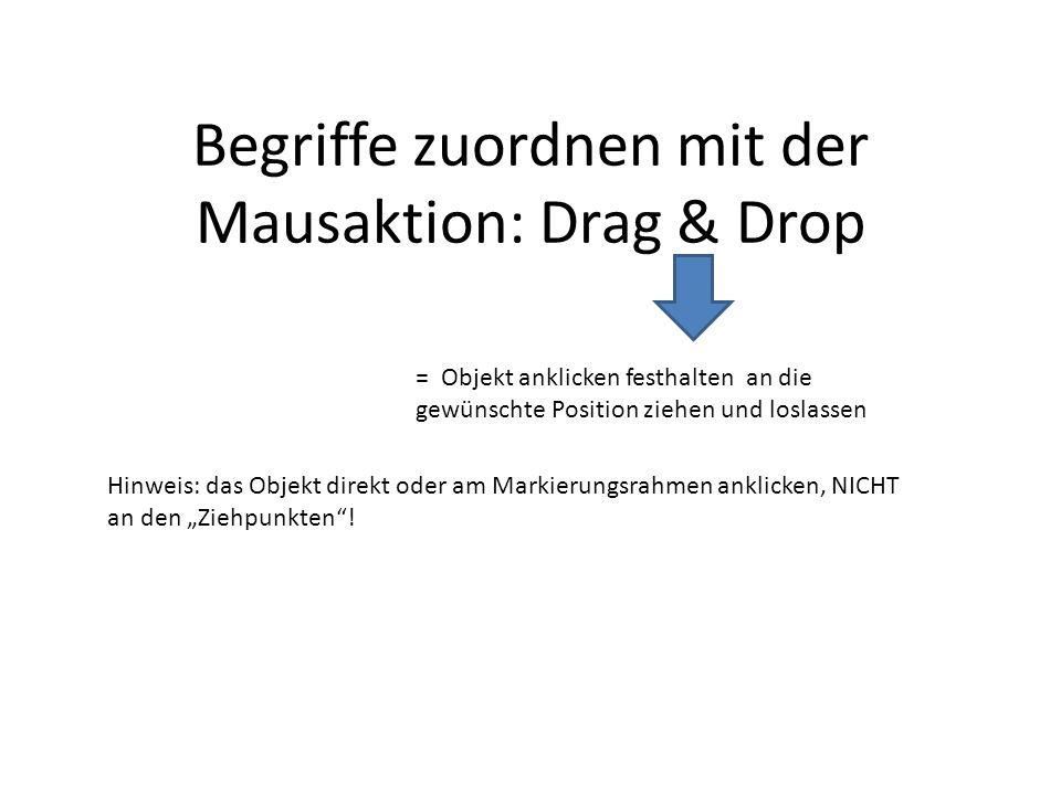 Begriffe zuordnen mit der Mausaktion: Drag & Drop