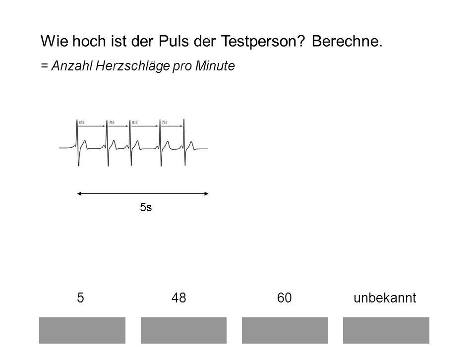 Wie hoch ist der Puls der Testperson Berechne.