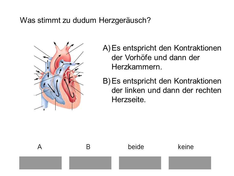 Was stimmt zu dudum Herzgeräusch