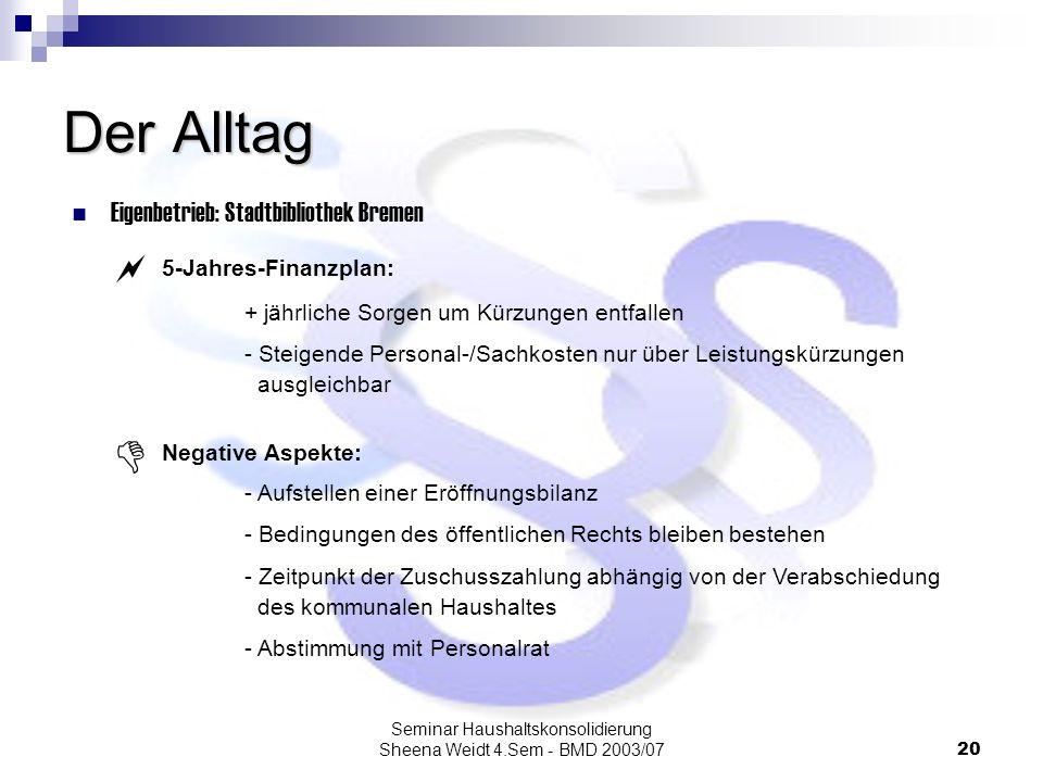 Seminar Haushaltskonsolidierung Sheena Weidt 4.Sem - BMD 2003/07