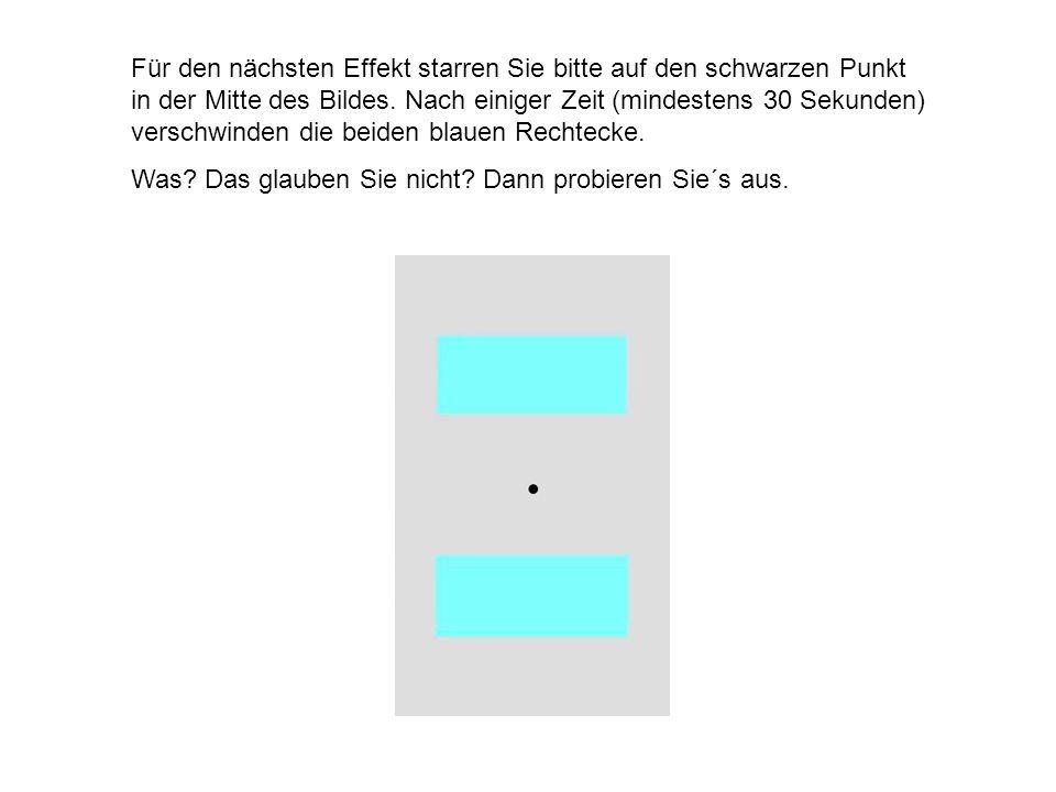 Für den nächsten Effekt starren Sie bitte auf den schwarzen Punkt in der Mitte des Bildes. Nach einiger Zeit (mindestens 30 Sekunden) verschwinden die beiden blauen Rechtecke.