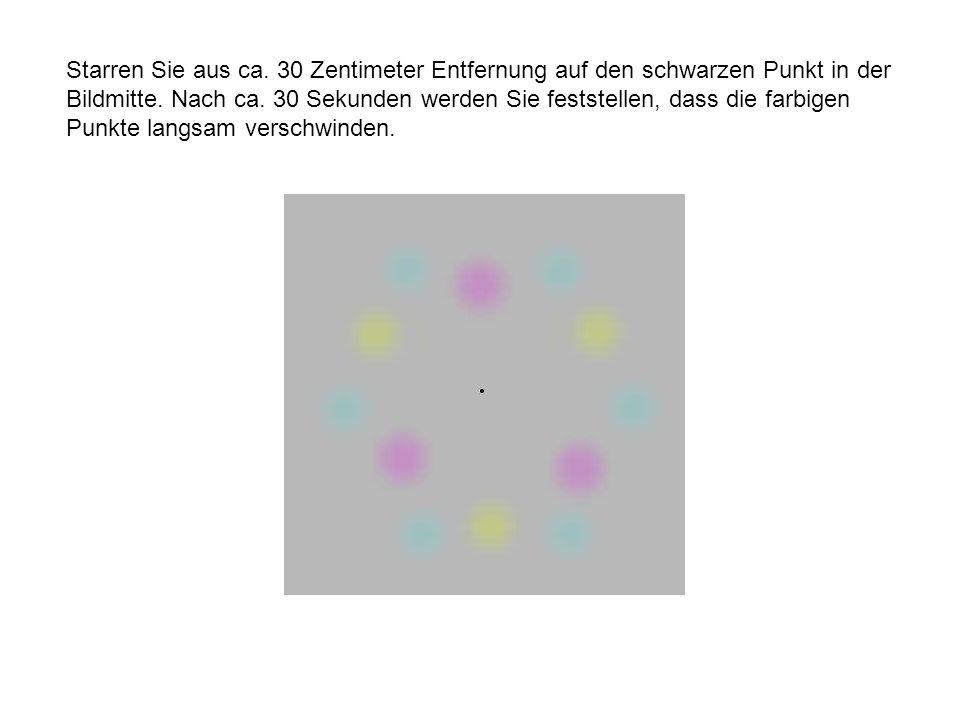 Starren Sie aus ca. 30 Zentimeter Entfernung auf den schwarzen Punkt in der Bildmitte.