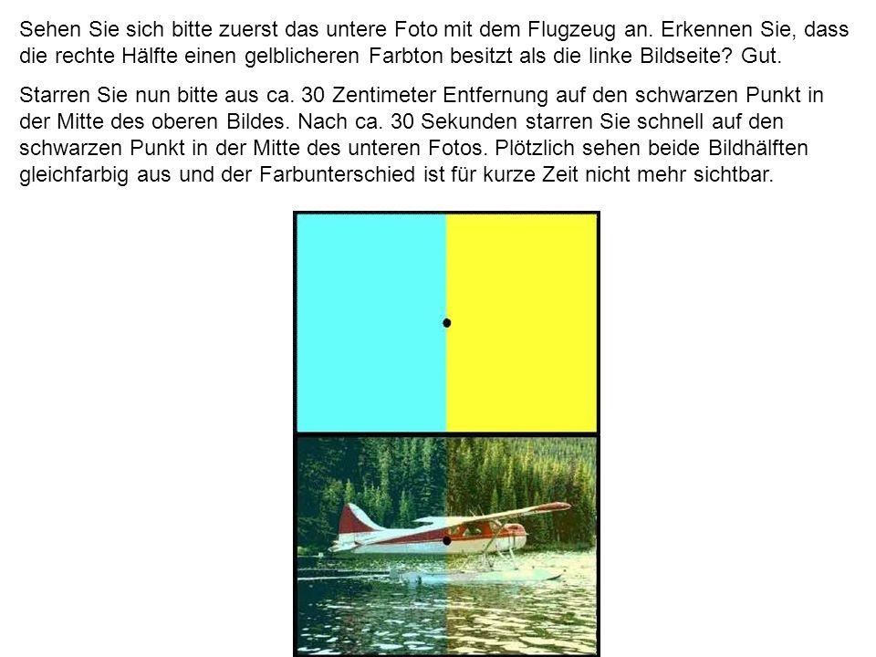 Sehen Sie sich bitte zuerst das untere Foto mit dem Flugzeug an
