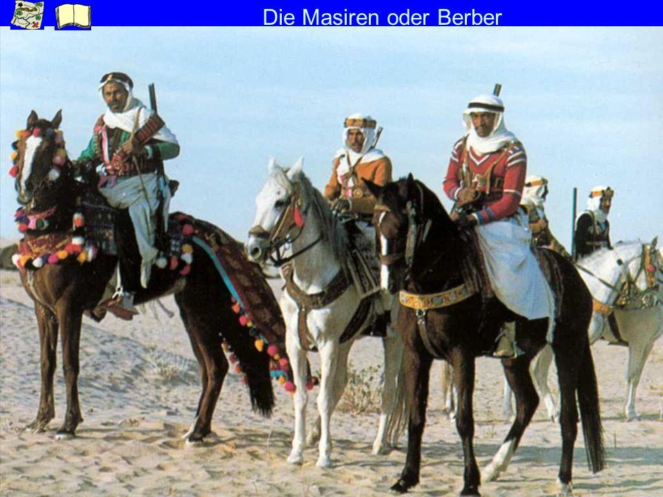Die Masiren oder Berber