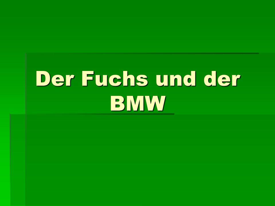 Der Fuchs und der BMW