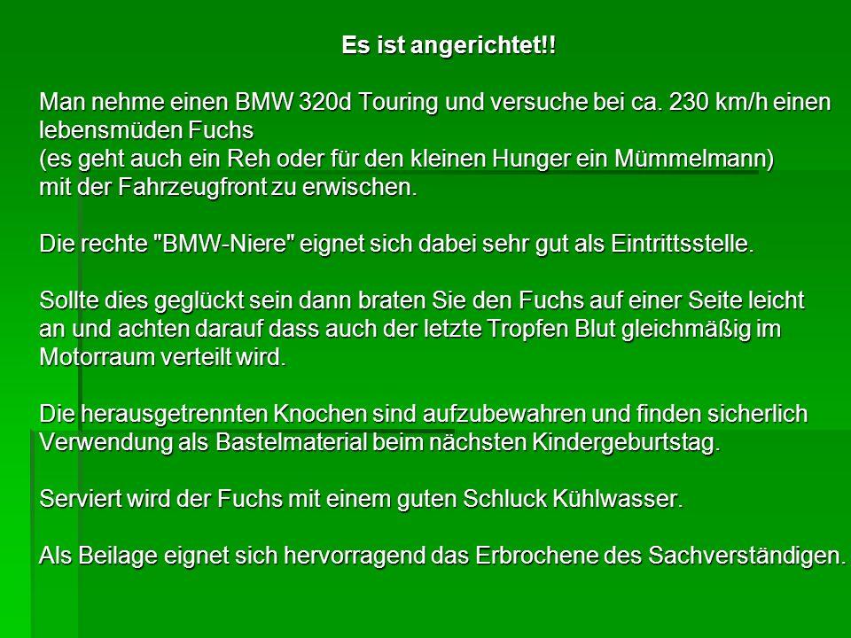 Es ist angerichtet!! Man nehme einen BMW 320d Touring und versuche bei ca. 230 km/h einen. lebensmüden Fuchs.
