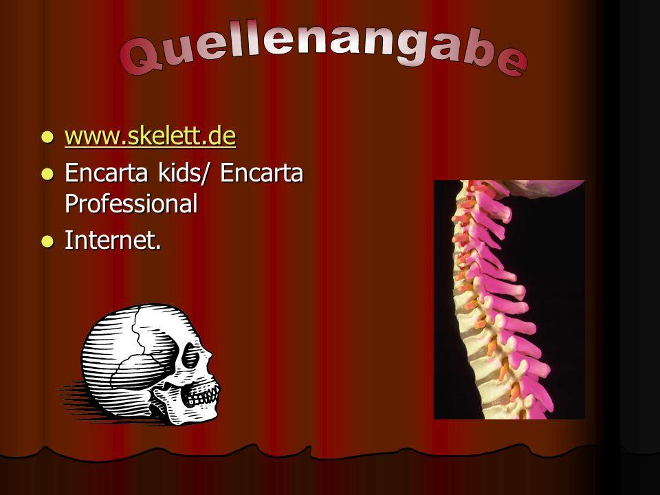 Quellenangabe www.skelett.de Encarta kids/ Encarta Professional
