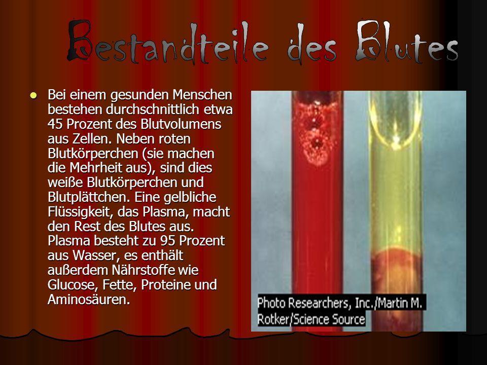 Bestandteile des Blutes