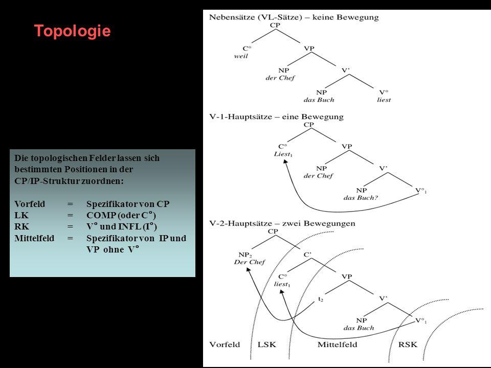 Topologie Die topologischen Felder lassen sich bestimmten Positionen in der CP/IP-Struktur zuordnen: