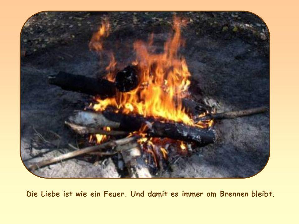 Die Liebe ist wie ein Feuer. Und damit es immer am Brennen bleibt.