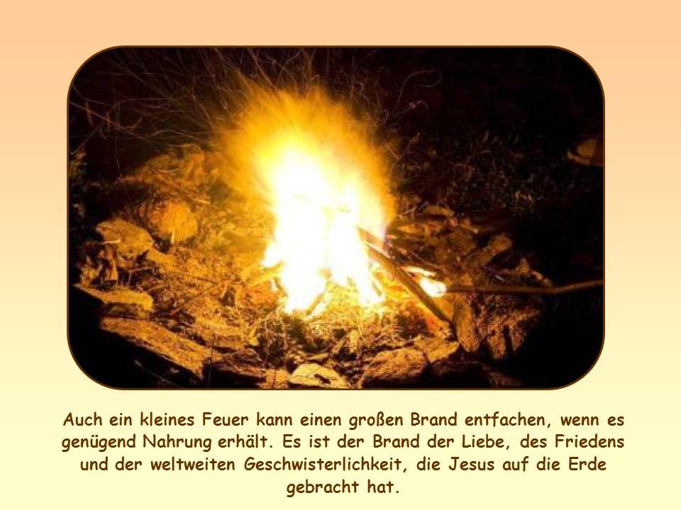 Auch ein kleines Feuer kann einen großen Brand entfachen, wenn es genügend Nahrung erhält.