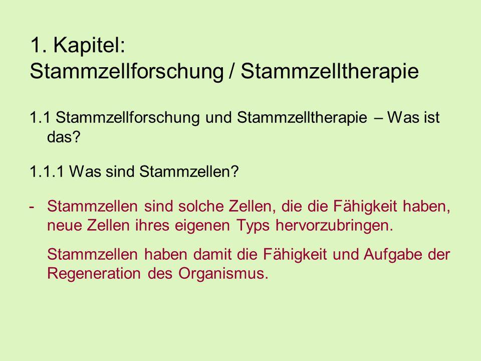 1. Kapitel: Stammzellforschung / Stammzelltherapie