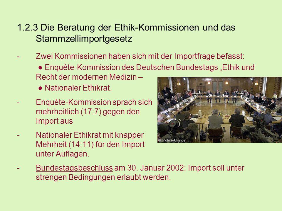 1.2.3 Die Beratung der Ethik-Kommissionen und das Stammzellimportgesetz