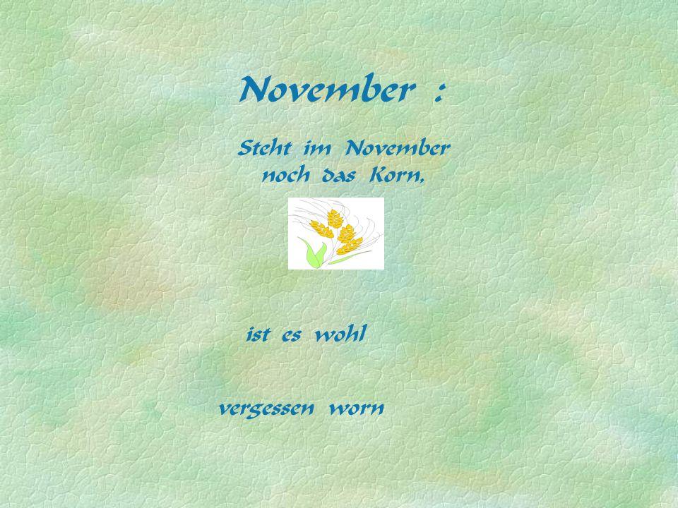 November : Steht im November noch das Korn, ist es wohl vergessen worn