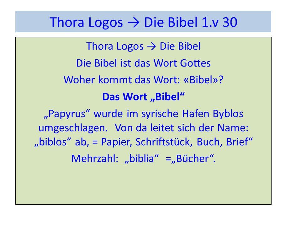 Thora Logos → Die Bibel 1.v 30