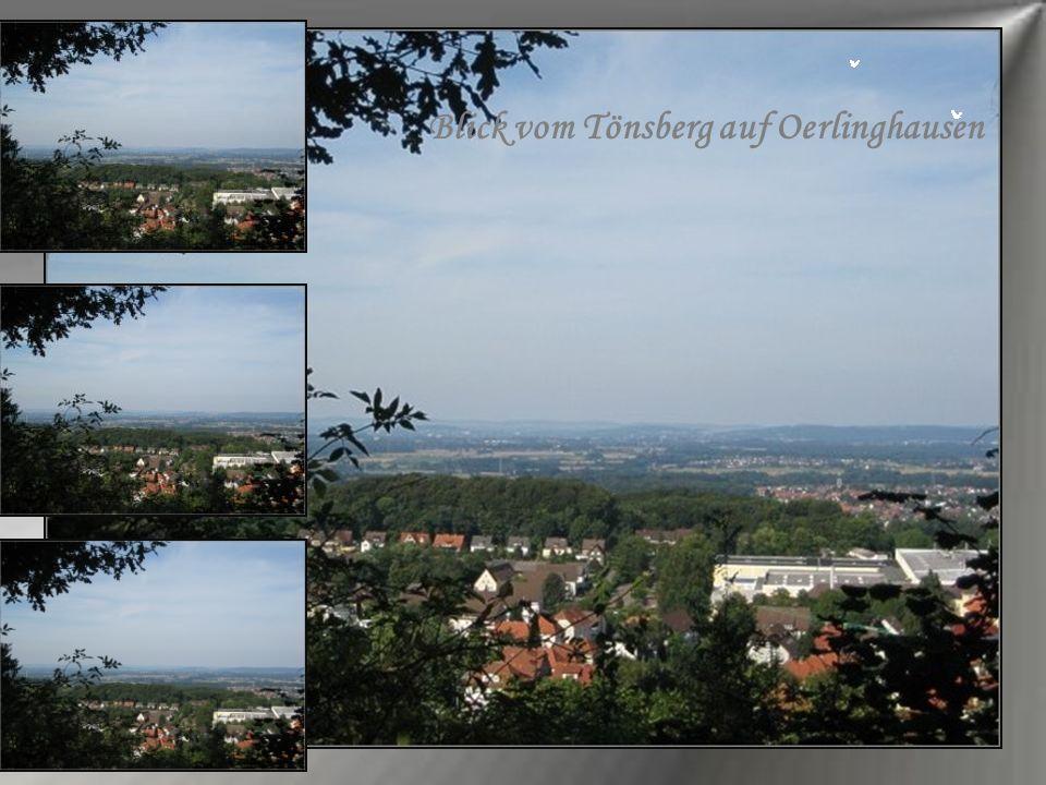 Blick vom Tönsberg auf Oerlinghausen