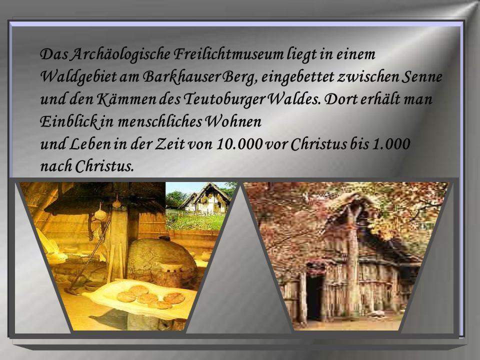 Das Archäologische Freilichtmuseum liegt in einem Waldgebiet am Barkhauser Berg, eingebettet zwischen Senne und den Kämmen des Teutoburger Waldes.