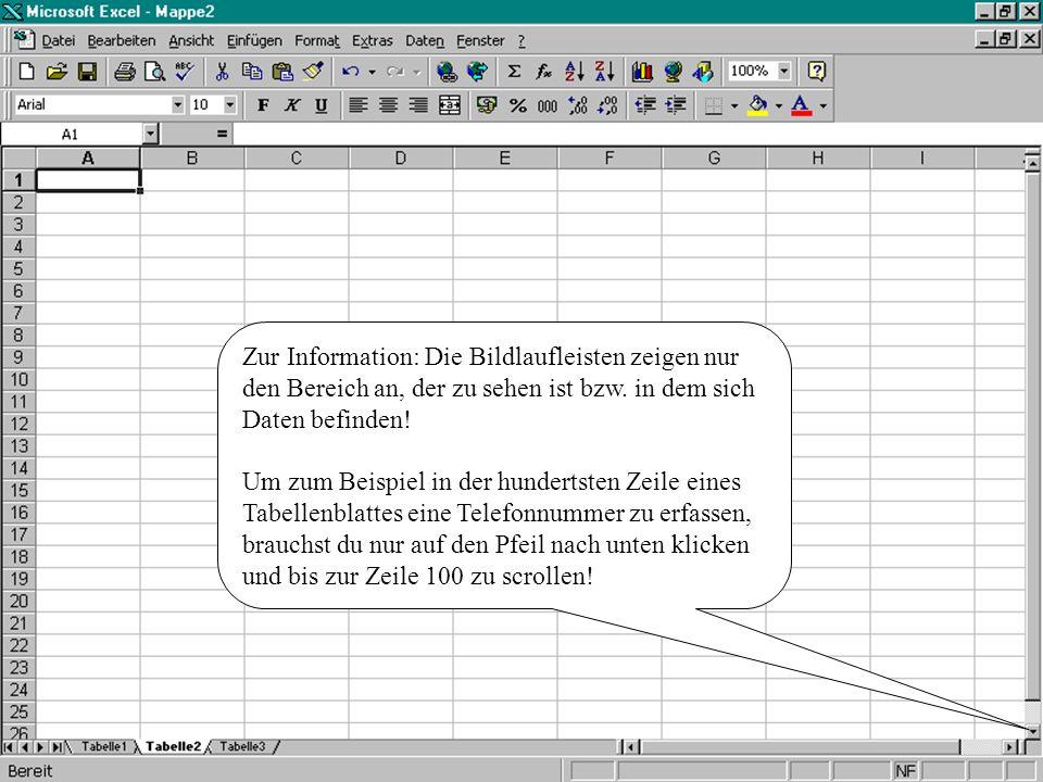 Zur Information: Die Bildlaufleisten zeigen nur den Bereich an, der zu sehen ist bzw. in dem sich Daten befinden!