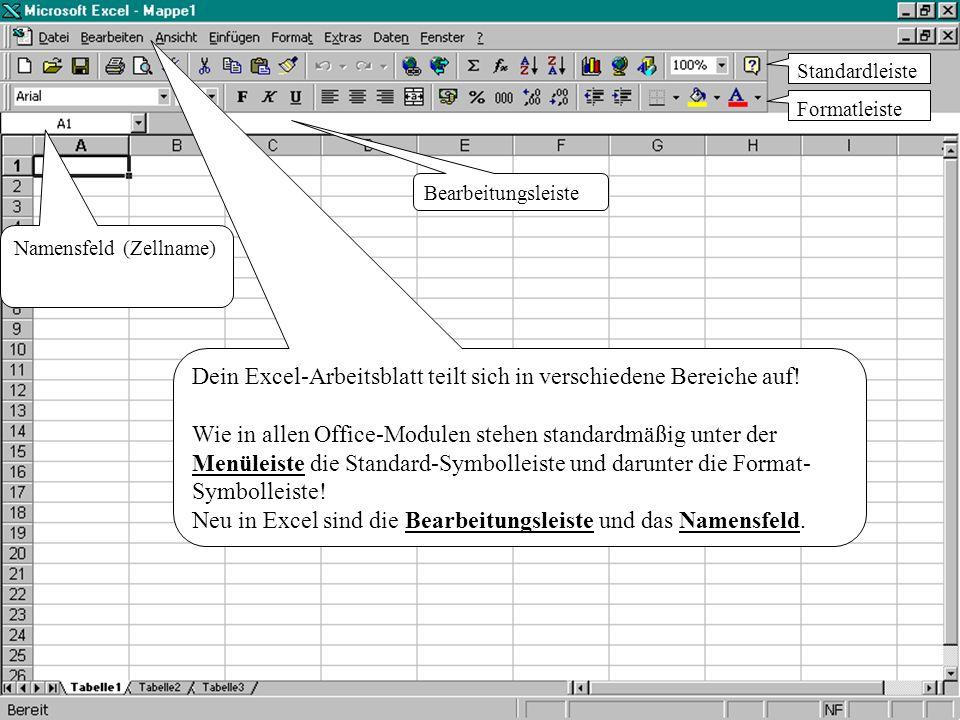 Dein Excel-Arbeitsblatt teilt sich in verschiedene Bereiche auf!